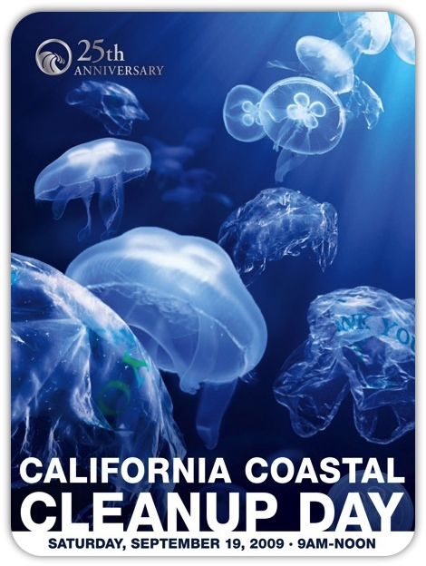 CCCD 2009 Poster JellyFish