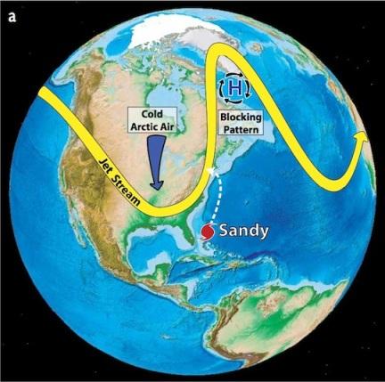Sandy1A
